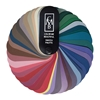 Summer Swatch Fan Summer Color Fan, Summer Color Palette, Summer Colors, Summer Shades,